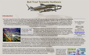 Bull Trout Telemetry Synthesis