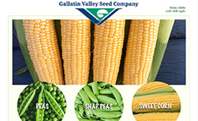 Gallatin Valley Seed – Peas
